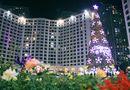 Gia đình - Tình yêu - Chiêm ngưỡng những cây thông Noel độc đáo nhất ở Hà Nội