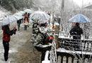 Tin trong nước - Thời tiết đêm nay và ngày mai: Sa Pa có thể đón tuyết rơi