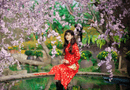 Gia đình - Tình yêu - Xuân Ất Mùi 2015: Hot girl Kiến Trúc khoe sắc bên vườn đào
