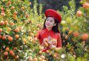 Cộng đồng mạng - Mê mẩn với nhan sắc xinh đẹp của nữ sinh Kinh tế bên vườn quất