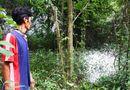 An ninh - Hình sự - Phát hiện xác người đàn ông đang phân hủy trong rừng tràm