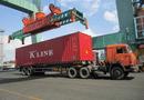 Tin trong nước - Tình trạng dồn hàng né trạm cân khi ra khỏi cảng