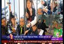 """Thể thao 24h - VTV 24h gây """"sốc"""" khi so sánh cổ động viên với... """"hổ đói"""""""