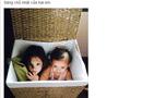 Chuyện làng sao - Cặp Tôm – Tép nhà Hồng Nhung tinh nghịch ngồi trong giỏ mây