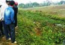 Miền Bắc - Hốt hoảng phát hiện thi thể nam thanh niên dưới mương nước