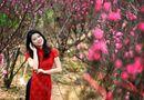 Địa điểm chụp ảnh Tết Dương lịch 2015 đẹp lung linh ở Hà Nội