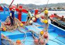 Tin trong nước - Tin bão số 5 mới nhất: Các tỉnh Nam Trung Bộ gấp rút ứng phó