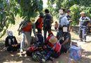 Tin trong nước - Giải cứu hàng chục sinh viên đi du lịch bụi bị mắc kẹt trên núi Bà Đen