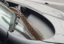 Tin trong nước - Đang lái xe bỗng nhiên phát hiện con rắn dài 1m ngoi lên trước mặt