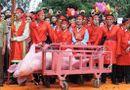 """Tin trong nước - Lễ hội chém lợn bị coi là """"dã man"""", Bắc Ninh nói gì?"""