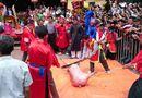 Tin trong nước - Vì sao dân làng Ném Thượng quyết chém lợn giữa sân đình?