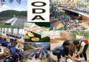 Kinh doanh - Sớm ban hành chính sách, cơ chế sử dụng nguồn vốn ODA