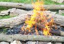 Đời sống - Vì sao phải kiêng lửa trong Tết Hàn Thực 3/3?