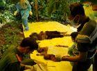 Tin trong nước - Vụ 3 bà cháu bị sát hại, phi tang xác ở Lâm Đồng: Lạnh người vì lời khai của nữ hàng xóm ác độc