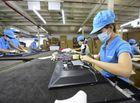 Thị trường - Nghi án Asanzo đội lốt hàng Việt: Báo cáo của Sở Công Thương gây bất ngờ