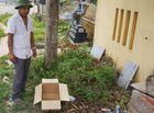 Tin trong nước - Vụ thi thể bé gái sơ sinh trong thùng carton: Lời kể của người trông coi nghĩa trang khi mở hộp