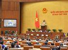 Tin trong nước - Hôm nay (22/11), Quốc hội tiến hành công tác nhân sự