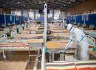 Tin thế giới - Đại sứ Trung Quốc lý giải số liệu hàng nghìn lọ tro cốt ở Vũ Hán
