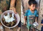"""Tin trong nước - Vụ 4 đứa trẻ Đắk Lắk ăn cơm nguội với ve sầu: Lãnh đạo huyện nói do """"sở thích"""""""