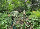 An ninh - Hình sự - Vụ 4 người bị chém ở Lạng Sơn: Tiết lộ tình tiết rùng rợn về nghi phạm