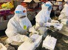 Tin trong nước - Bắc Ninh thêm 9 ca nghi mắc COVID-19 liên quan BV Bệnh Nhiệt đới Trung ương