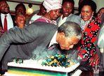 Cuộc đời thăng trầm của Nelson Mandela qua ảnh - Ảnh thứ 10