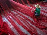 Ngắm vẻ đẹp mê hoặc của Việt Nam dưới ống kính các nhiếp ảnh gia