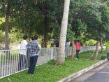 Phát hiện người đàn ông treo cổ trên cây ở sân bay Tân Sơn Nhất