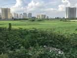 """30 dự án ôm """"đất vàng"""" rồi bỏ hoang tại Hà Nội chính thức bị chấm dứt hoạt động"""