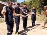 Hổ mang chúa dài gần 5m lẻn vào bếp khiến gia chủ thất kinh