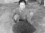 """Làng nghề làm tăm hương hơn 100 tuổi """"thoi thóp"""" vì dịch COVID-19"""
