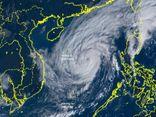 Tin bão số 13 khẩn cấp: Từ ngày 14/11, Hà Tĩnh - Quảng Nam có gió giật cấp 11