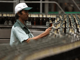 ThaiBev gom Sabeco và mảng bia tại Thái Lan để tiến hành IPO, định giá lên đến 10 tỷ USD
