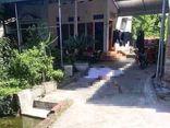Nóng: Thảm án tại Thái Bình, con rể truy sát cả nhà vợ khiến 3 người tử vong