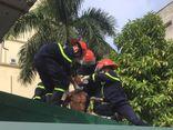 Người đàn ông bất ngờ đòi nhảy lầu bệnh viện tự tử ở Nghệ An
