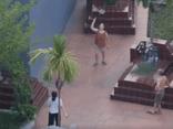 3 nữ, 1 nam rủ nhau vào nghĩa trang....tập thể dục