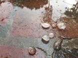 Tin tức dự báo thời tiết hôm nay 16/9: Hà Nội cảnh báo có mưa đá