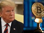 Cựu Tổng thống Mỹ Donald Trump bất ngờ bày tỏ quan điểm về Bitcoin