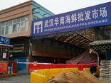 Liên Hợp Quốc kêu gọi Trung Quốc phối hợp điều tra nguồn gốc COVID-19 giai đoạn 2