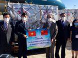 Tin trong nước - Việt Nam tiếp nhận 500.000 liều vaccine Vero-Cell của Sinopharm