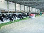 Kinh doanh - Liên doanh của Vinamilk ra mắt sản phẩm tại Philippines, đặt mục tiêu chiếm 10% thị phần Sữa