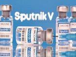 Chính phủ đồng ý để Tập đoàn T&T mua 40 triệu liều vắc xin Sputnik V của Liên bang Nga