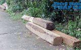 Đột kích điểm nóng khai thác gỗ lậu tại một xã vùng biên