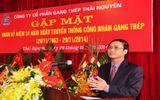 Vì sao Tổng giám đốc Công ty CP Gang thép Thái Nguyên bị mất chức?