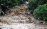 Dự báo thời tiết ngày 25/4: Bắc Bộ lũ quét và sạt lở đất