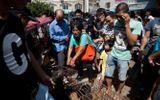 Người phụ nữ Trung Quốc trả tiền cứu 100 con chó khỏi lễ hội giết thịt