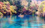 Những lưu ý cần thiết nhất khi đi du lịch Trung Quốc
