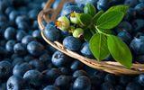 10 thực phẩm giúp tăng cường trí não