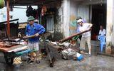 Cứu trợ khẩn cấp người dân Quảng Ninh bị ảnh hưởng bởi lũ lụt