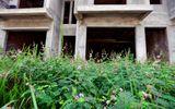 Những khu đô thị nghìn tỷ mọc rêu vắng bóng người